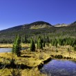 Rocky mountains — Stock Photo