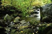Långsam rörelse creek — Stockfoto