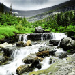 Glacier National Park — Stock Photo #4486922