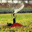 Water jets sprinkling stadium field — Stock Photo