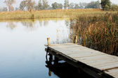 Peaceful dock — Stock Photo