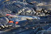 Lava flow — Stock Photo