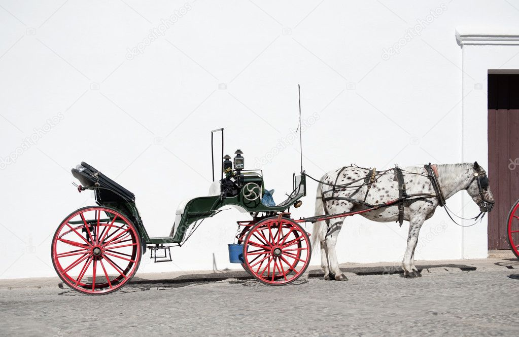 Horse and Open Carriage for hire in Ronda, Spain  Stock Photo #5342774