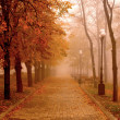 Stock Photo: Autumn Mist