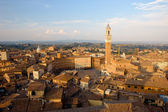 Piazza del campo. Siena — Stock Photo