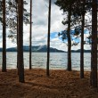 Stock Photo: Forest beside lake Borovoe, Kazakhstan