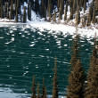 Frozen mountain lake — Stock Photo
