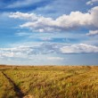 Steppe landscape — Stock Photo #4931674
