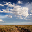 Steppe landscape - Stock Photo