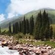 Stock Photo: Panoramof mountain river