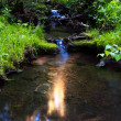 Reflection of the sun in a brook — Stock Photo