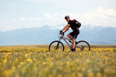 Smiling mountain biker — Stock Photo