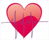 The electrocardiogram — Stock Vector