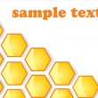 Stock Vector: Background. Honey honeycombs