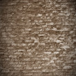 Brick wall - ancient fortress — Stock Photo