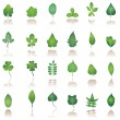 Tree leafs and nature icons - Stock Vector