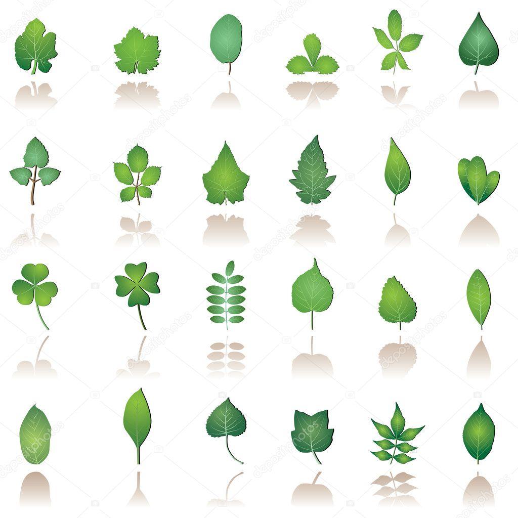 дерево иконка: