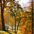 Stock Photo: Autumn dawn in Tsaritsino's park . Mellow autumn, Moscow, Russia.