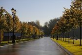 Autumn morning in park Tsaritsino in Moscow, Russia — Stock Photo