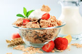 Breakfast cereal — Stock Photo