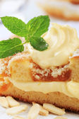 Apricot cake with pudding cream — Stock Photo