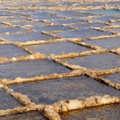Salt evaporation ponds — Stock Photo