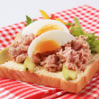 Open-faced tuna sandwich — Stock Photo