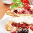 Berry fruit cake with cream cheese — Stock Photo #4941666