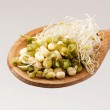 Mung beans and sprouts — Stock Photo