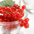 Red currant — Stock Photo #5289746