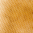 Honeycomb — Stockfoto #5289857