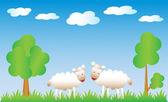 O sorte sheeps. — Vetor de Stock