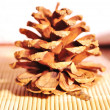 Fir-cone on a bamboo towels - Stock Photo