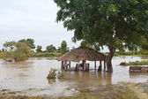 Sri lankan floods — Stock Photo