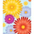 Bright flower design - Stock Vector
