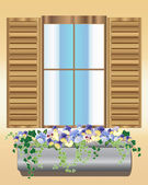 Pansy window box — Stock Vector