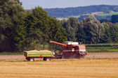 Combine harvester and trailer — Stock Photo