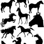 Horse silhouette vector — Stock Photo