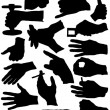 Stock Photo: Hand Signs silhouette