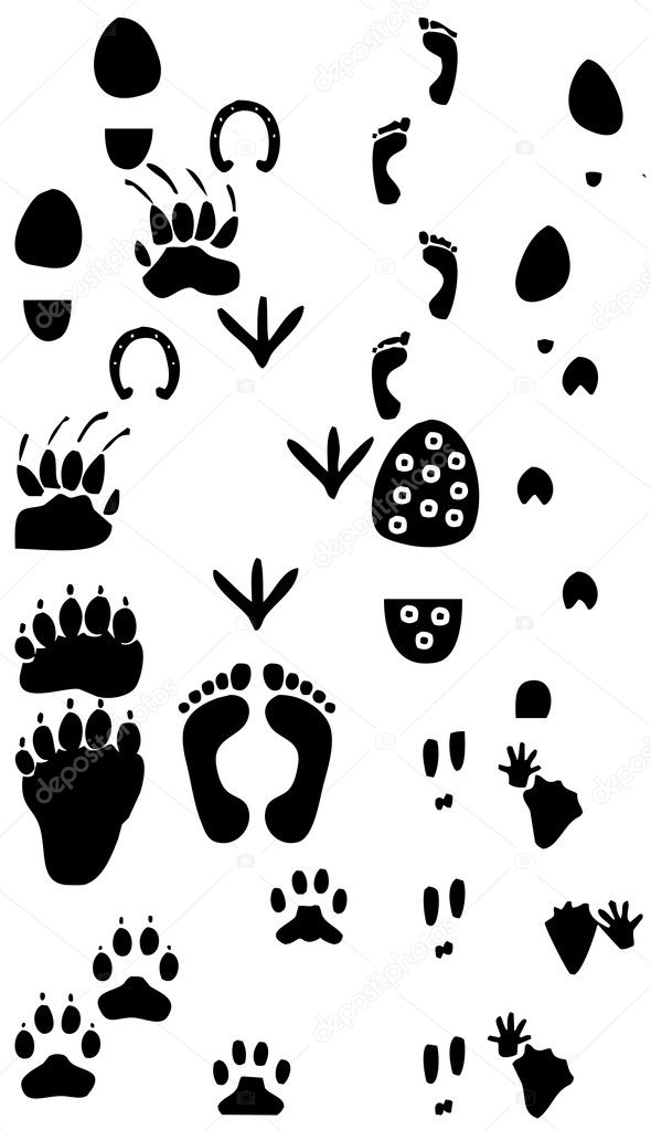 Traces silhouette collection — Stock Photo #4663489