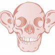 Vector illustration a human skull by a holiday helloween — Stock Vector #4911858