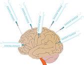 Vector een menselijke hersenen en medische spuiten — Stockvector