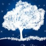 Snow tree vector background card — Stock Vector