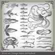 Vector set: fish background - Imagens vectoriais em stock