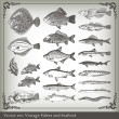 Vector set: fish background — Vector de stock