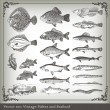 Vector set: fish background — Vettoriale Stock