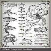 Vector set: fish background — Stock Vector