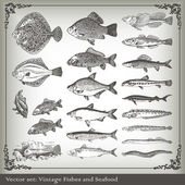 Vector set: fish background — Stockvector