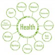 Health network diagram concept made with ecology icons - Stock Vector