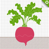 Beetroot vector background — Stock Vector
